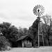 Penn Farm, Cedar Hill, Texas.