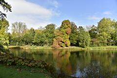 L'étang de l'Orangerie dans sa splendeur