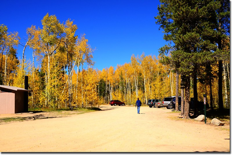 Fall colors, Kenosha Pass  (45)