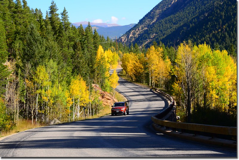 Fall colors, Guanella Pass, Colorado (1)