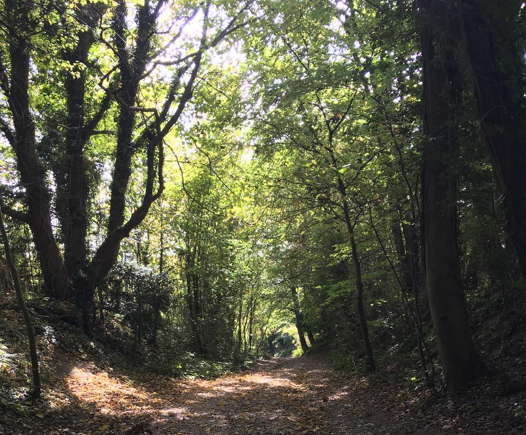 2017-10-08 11.49.15 HDR Woldingham Circular