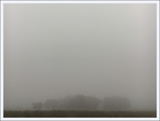 Blog - Foggy Notion#2