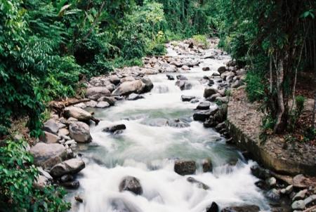 Photo Pemandangan Alam Sungai A Photo On Flickriver