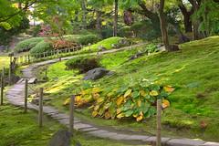 Oyakuen japanese garden
