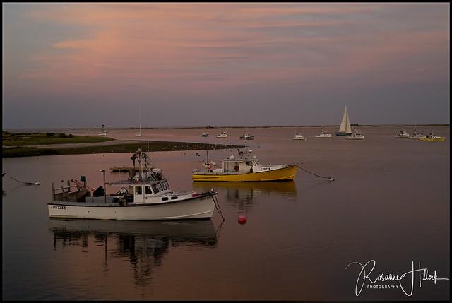 Cape Cod Boats in Harbor LG