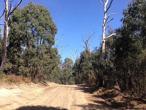 Dry Creek Road, Wandong State Forest