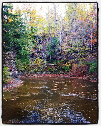 Hunters Creek. Maybe my last creek-walk of the year? #hunterscreekpark #wny #eriecounty #autumn #EastAurora #nature #hiking #stream #runningwater #forest