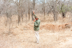 Trying to gps track the male cheetah