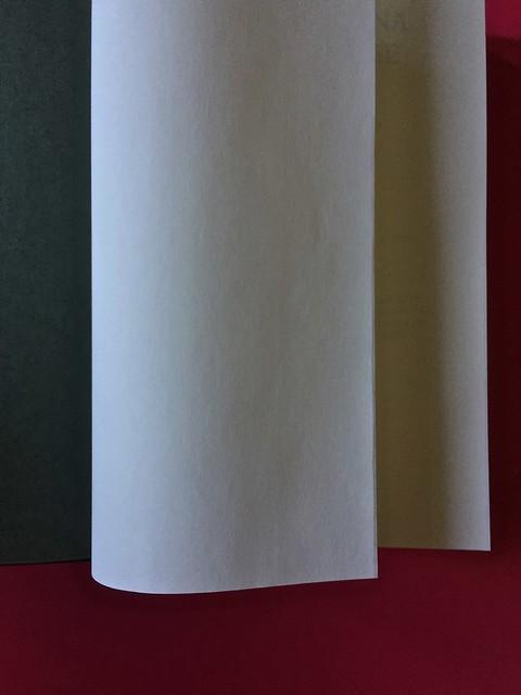 Sandro Penna, Poesie, prose e diari. Mondadori, i Meridiani; Milano 2017. Resp. gr. non indicata. Verso della carta di guardia, pag. I, pag. III [part.].