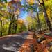 Mount Washington Auto Road II