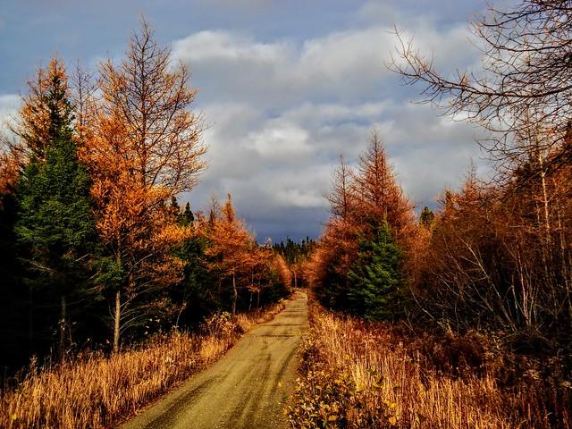 Trans Canada Trail, Sony DSC-W150