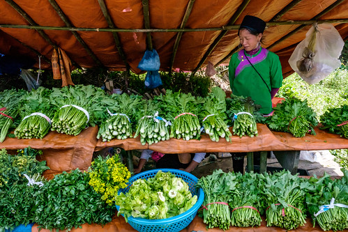 Fresh vegetables in Ta Phin Village