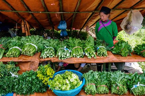 Fresh vegetables in Ta Phin Village