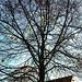Frohes Zählen. Der Herbst ist da :fallen_leaf::maple_leaf: #herbst #meineweltdeineweltausmeinersicht #mobil