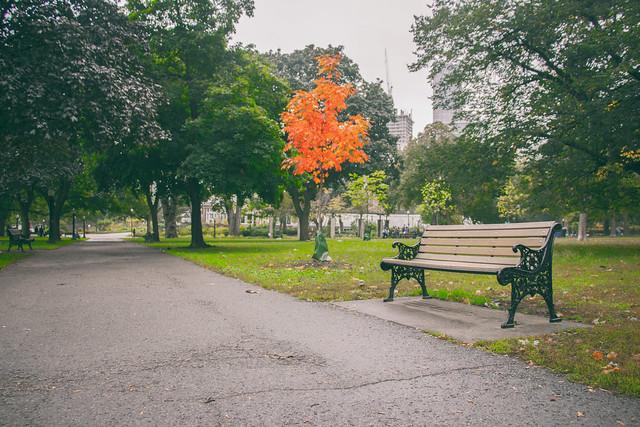 A Seat beside Autumn
