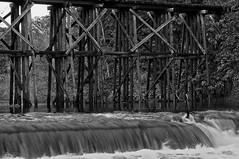 Hamilton Trestle and Dam. Hamilton, MI