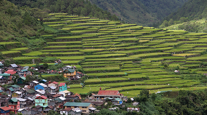 village and rice terraces_MIKE10