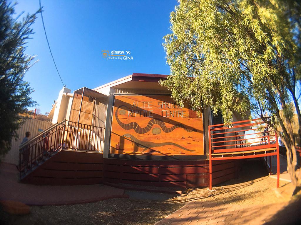 【愛麗斯泉景點】澳洲北領地|爬行動物中心(Alice Springs Reptile Centre) @GINA環球旅行生活|不會韓文也可以去韓國 🇹🇼