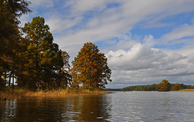 Chickahominy River 10-7-17 (30)