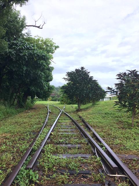 臺東舊鐵道路廊