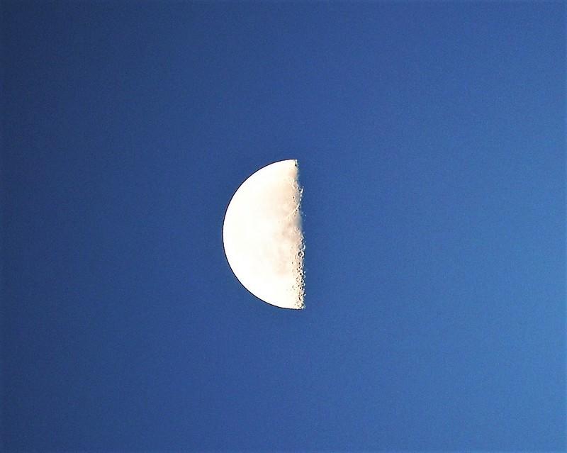 Moon 12.10 (6)