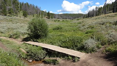 Horseshoe Gulch, Segment 6, Colorado Trail, CO2