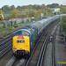 Southampton  55009