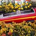 Rocket ship with guns carnival ride (Mum Show Gage Park)