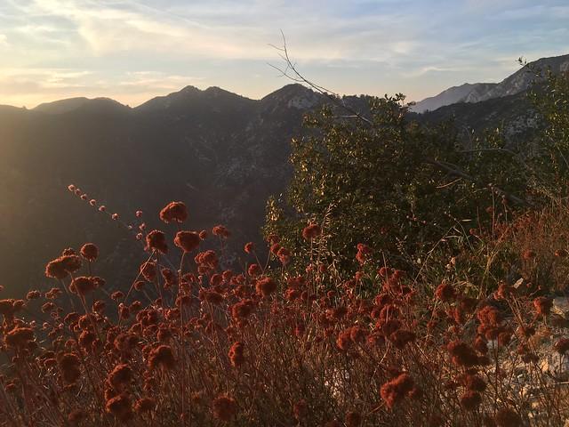 San Gabriels alpenglow
