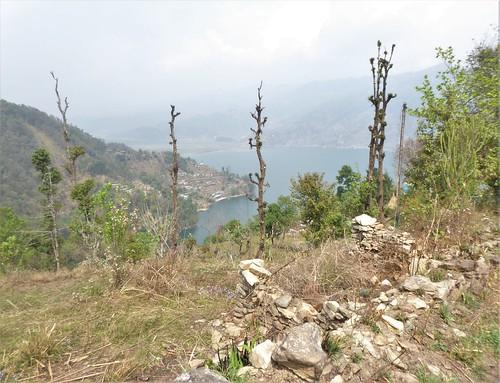 n-pokhara-Pagode-Paix (10)