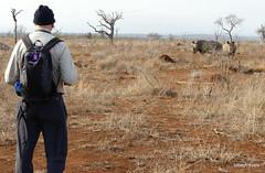 Walking with White Rhino, Mkhaya (7)