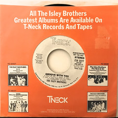 THE ISLEY BROTHERS:GROOVE WITH YOU(JACKET A)