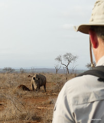 Walking with White Rhino, Mkhaya (12)