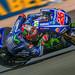 Maverick Viñales - Movistar Yamaha MotoGP
