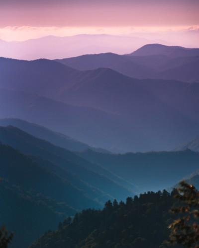 Smoky Mountain Purples. Photographer Dan Price