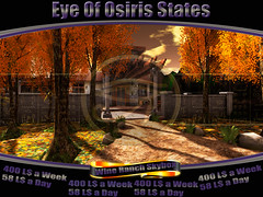 newset skybox at Eye of Osiris rentals
