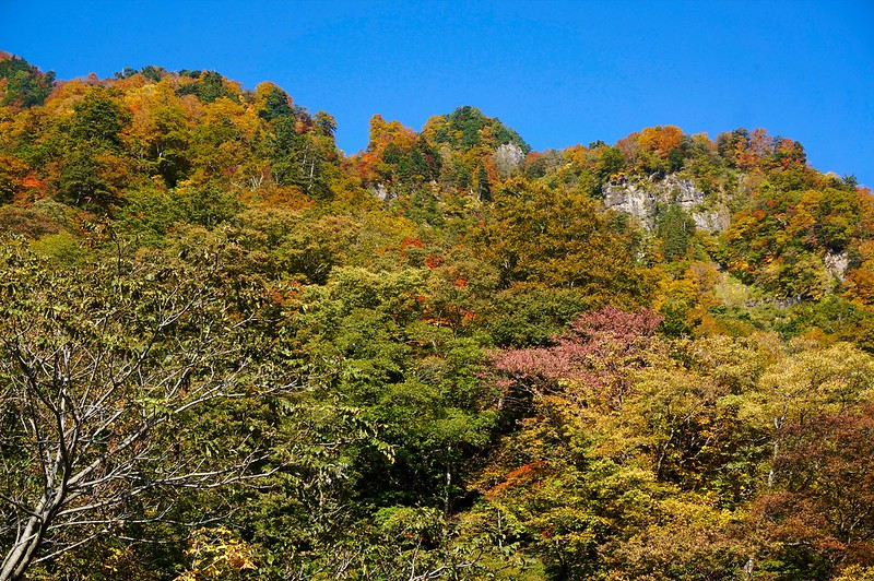 "Natural park ""JADANI"""