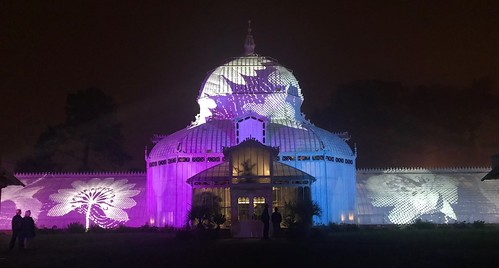 Conservatory of Flowers light show