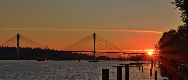 Port Mann Bridge at Sunset