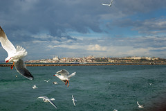 2013-Turquia-Istambul-0125.jpg
