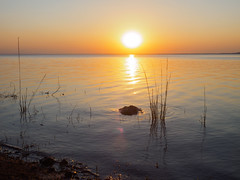 relaxing evening song,