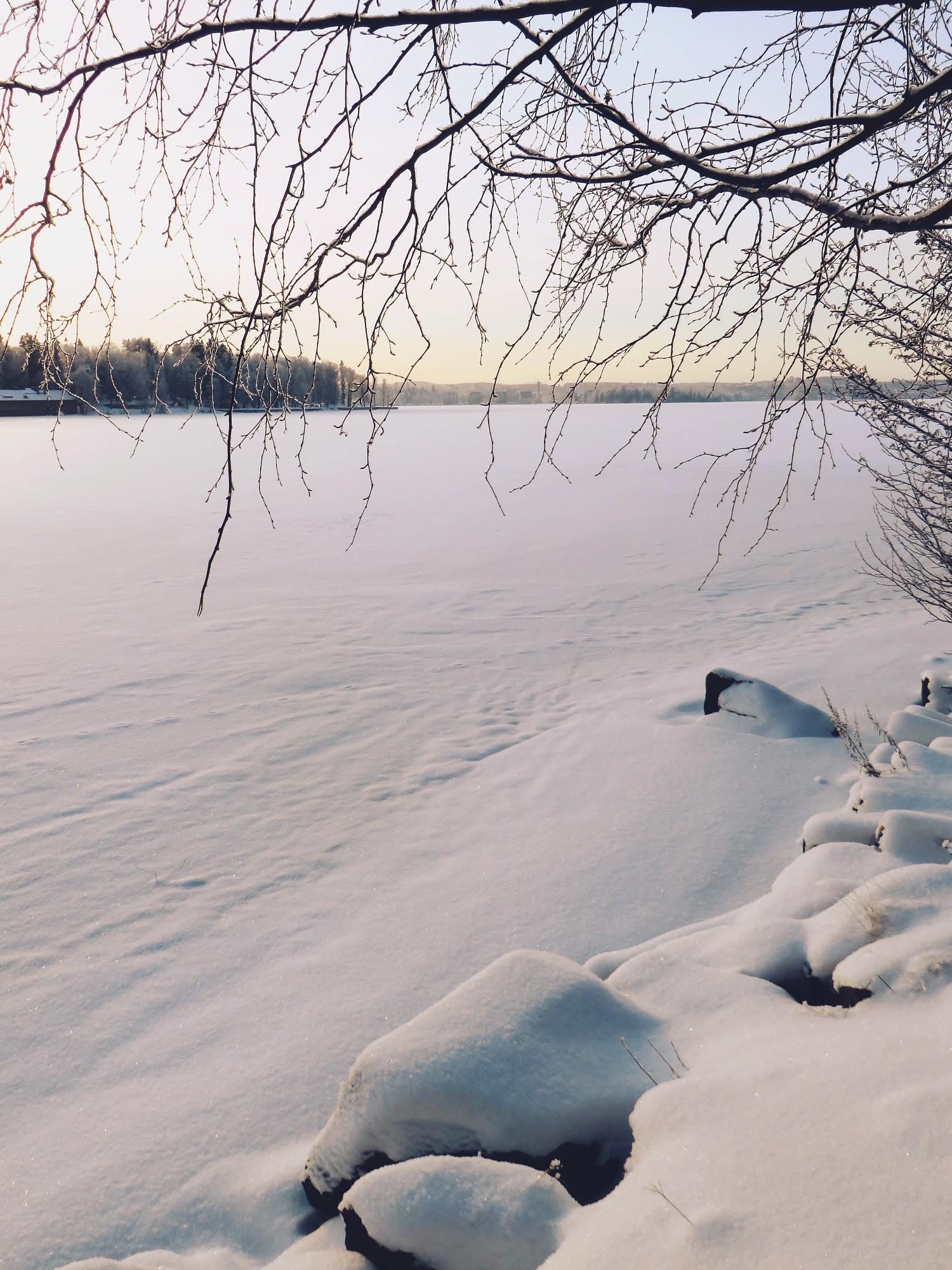 talviyllätti3