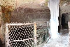 2013-03-03-13-42-47_Les Forts Trotters_à La Petite Pierre - Photo of Adamswiller