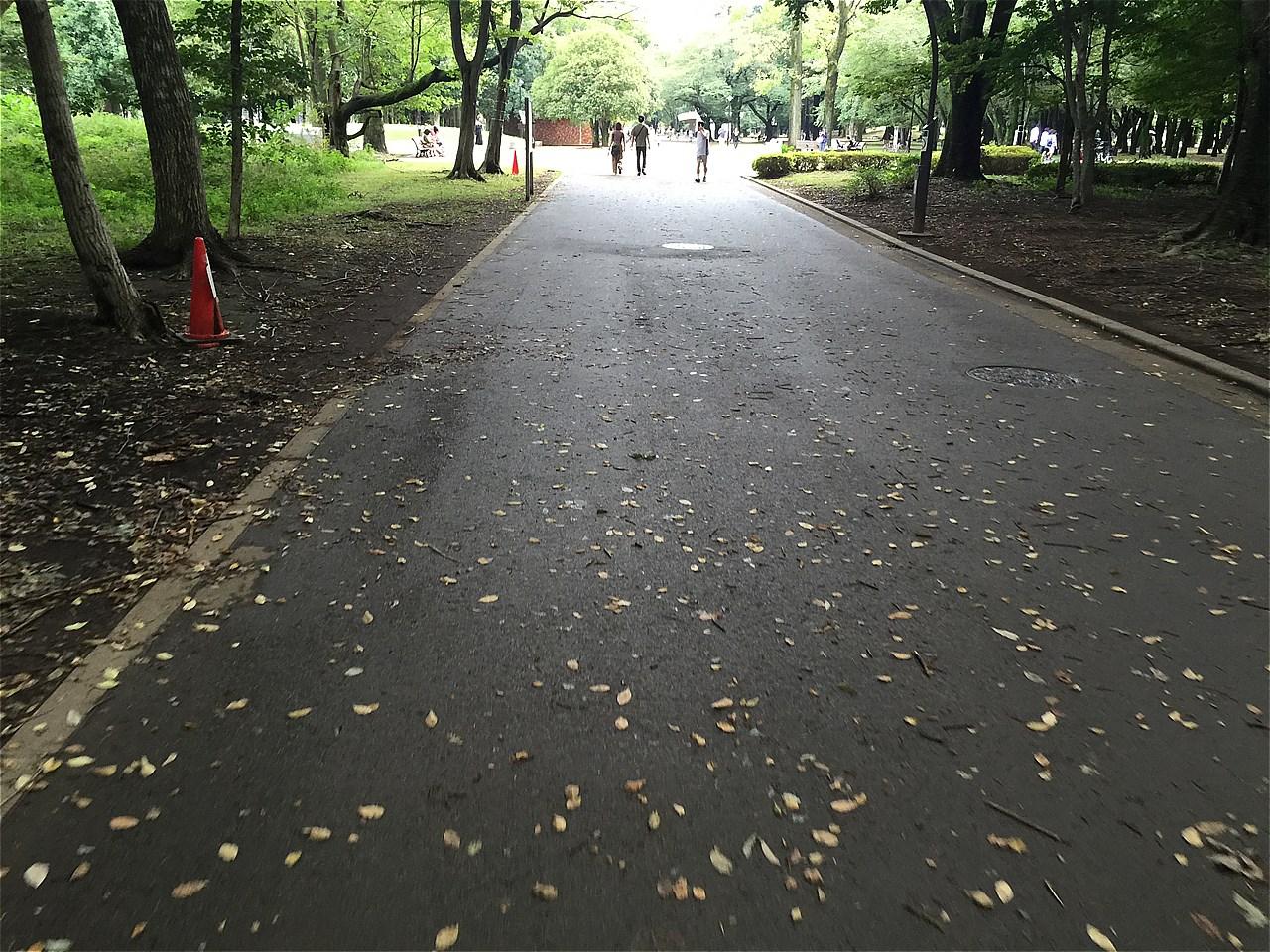 20170923_光が丘 (1)