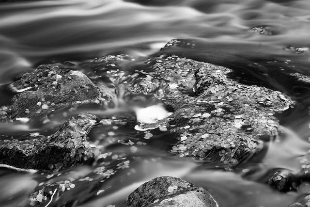Tervajoki river