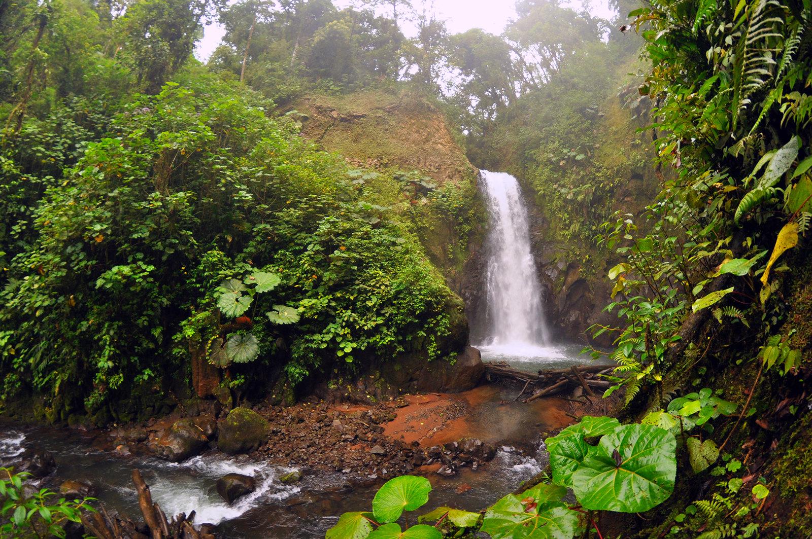 Viajar a Costa Rica / Ruta por Costa Rica en 3 semanas ruta por costa rica - 37538082434 cd1450073b h - Ruta por Costa Rica en 3 semanas