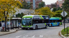 Montgomery County Transit Ride On extRa 2017 Gillig Low Floor BRT Plus Diesel #44060D