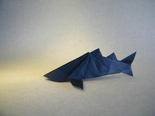 Shark - Hitoshi Kakami