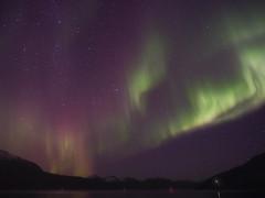 Aurora borealis-220116