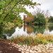 Kew - Autumn 2017 -11 20102017.jpg